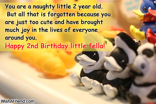 2 Year Old Birthday Quotes  You are a naughty little 2 2nd Birthday Wish