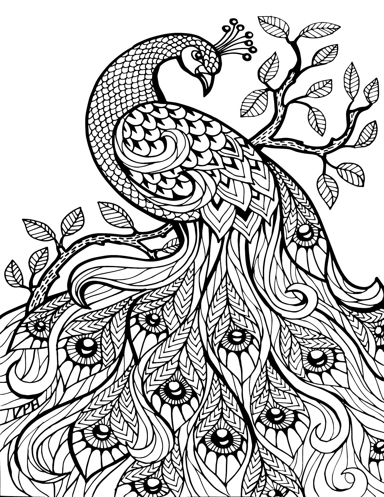 Adult Coloring Book Download  Free Download Adult Coloring Pages