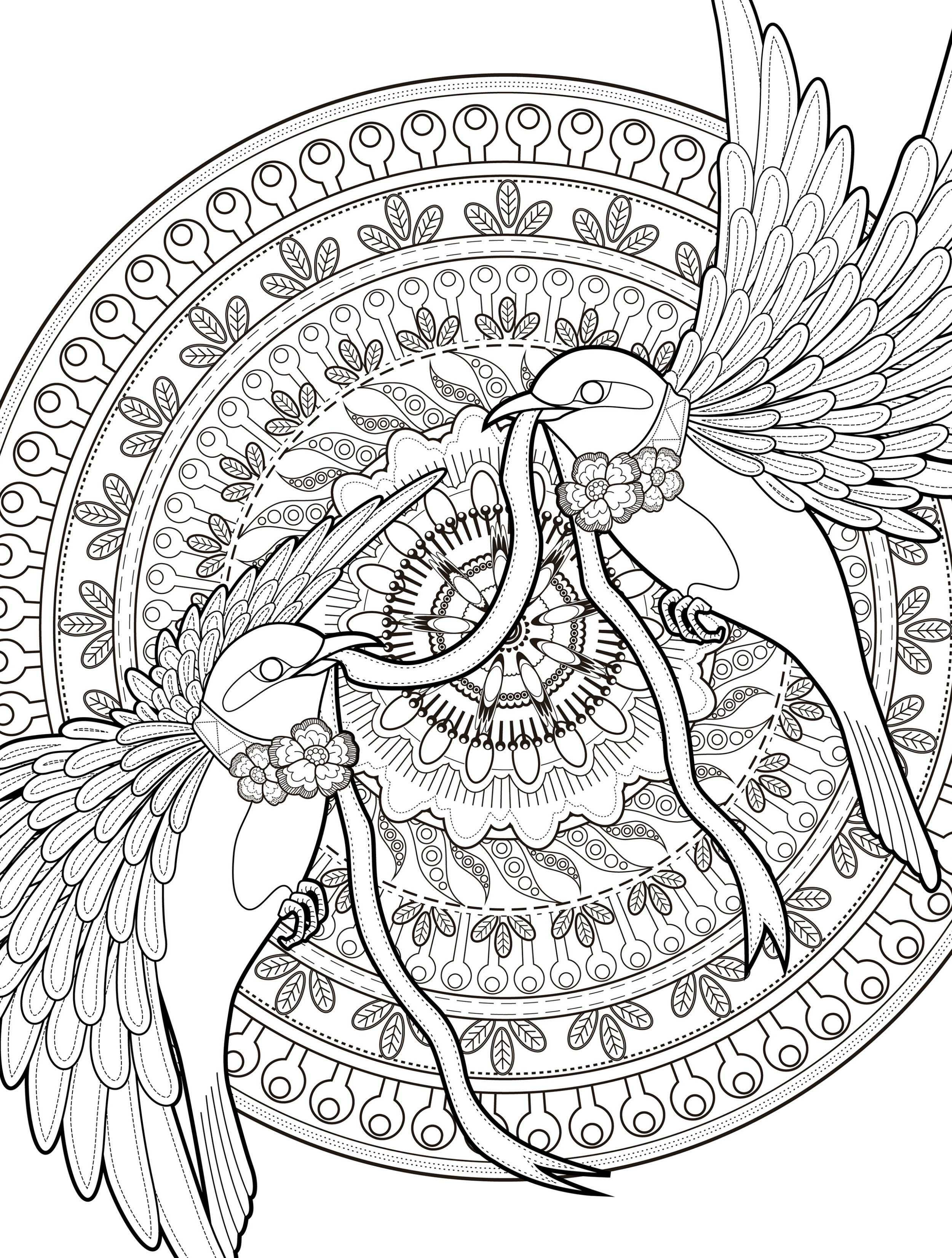 Adult Coloring Book Download  1000 images about More coloring on Pinterest