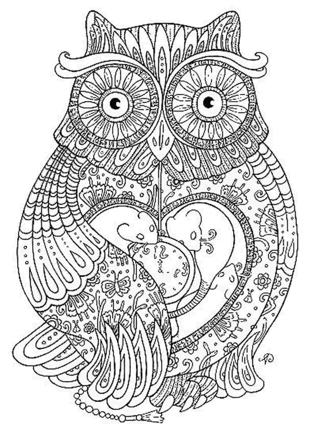 Adult Coloring Book Download  Download Stylish Download Adult Coloring Pages For Free