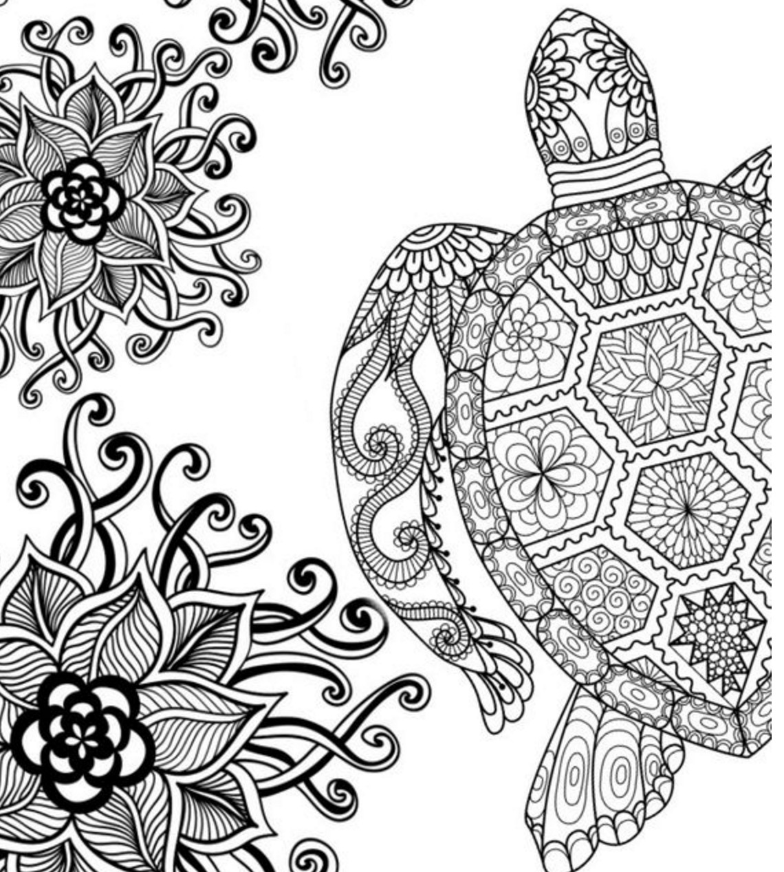 Adult Coloring Book Download  20 Free Adult Colouring Pages The Organised Housewife
