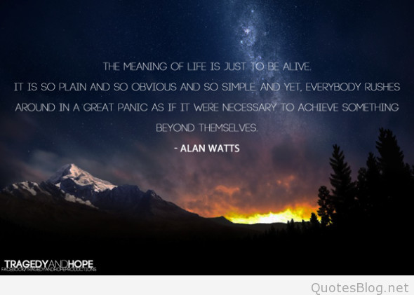 Alan Watts Quotes About Life  Best Alan Watts Wallpapers and quotes
