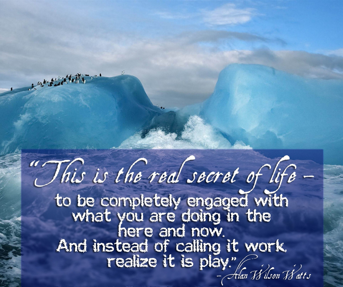 Alan Watts Quotes About Life  8 Quotes by Alan Watts on Meditation and Enlightenment