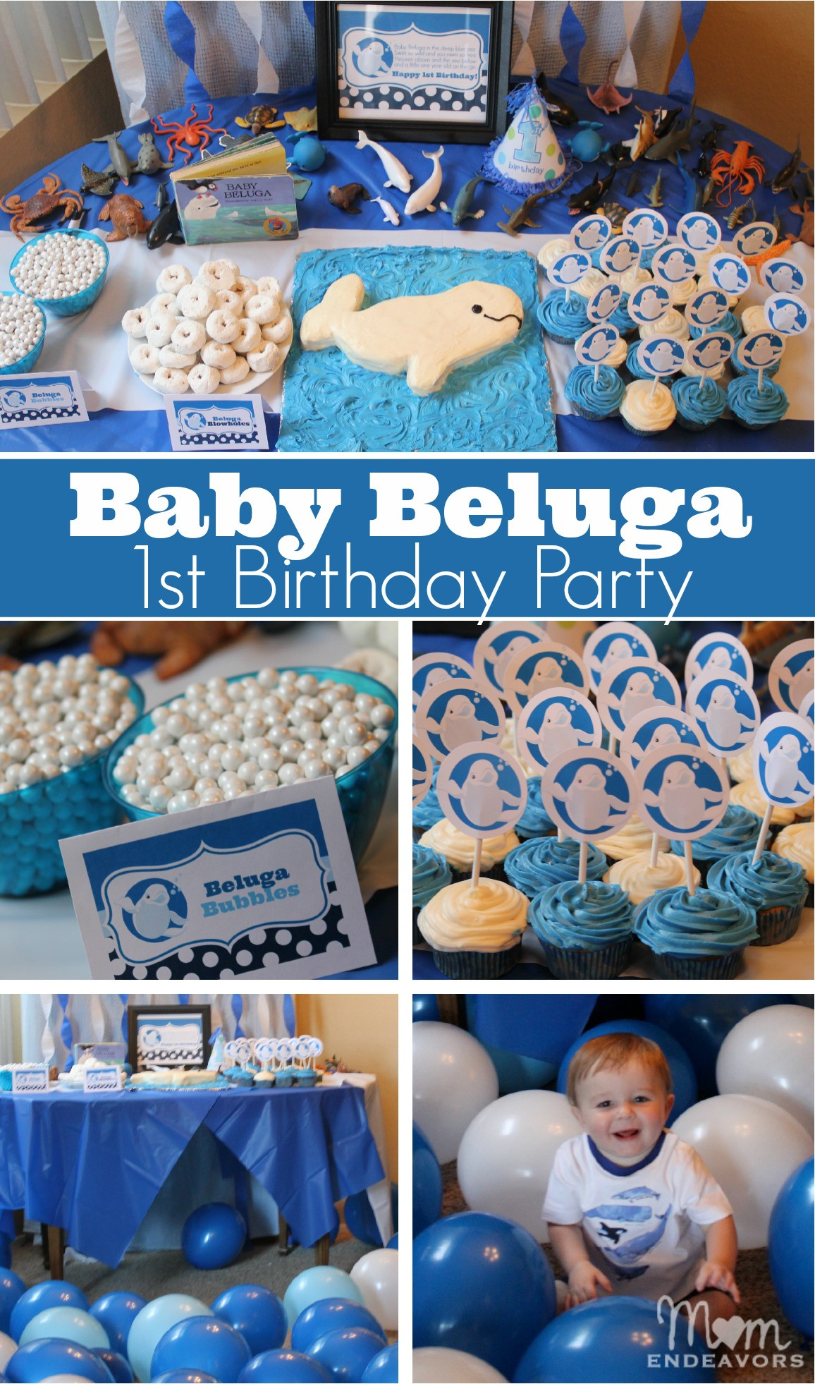 Baby Boys 1St Birthday Gift Ideas  Baby Beluga 1st Birthday Party