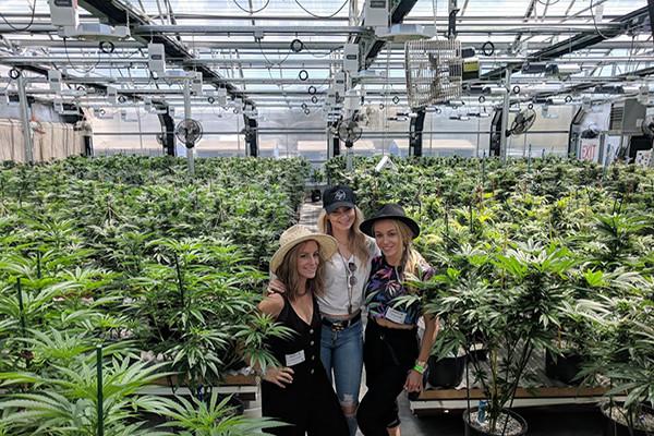 Bachelorette Party Ideas Denver  Colorado Cannabis Tour Denver Colorado My 420 Tours