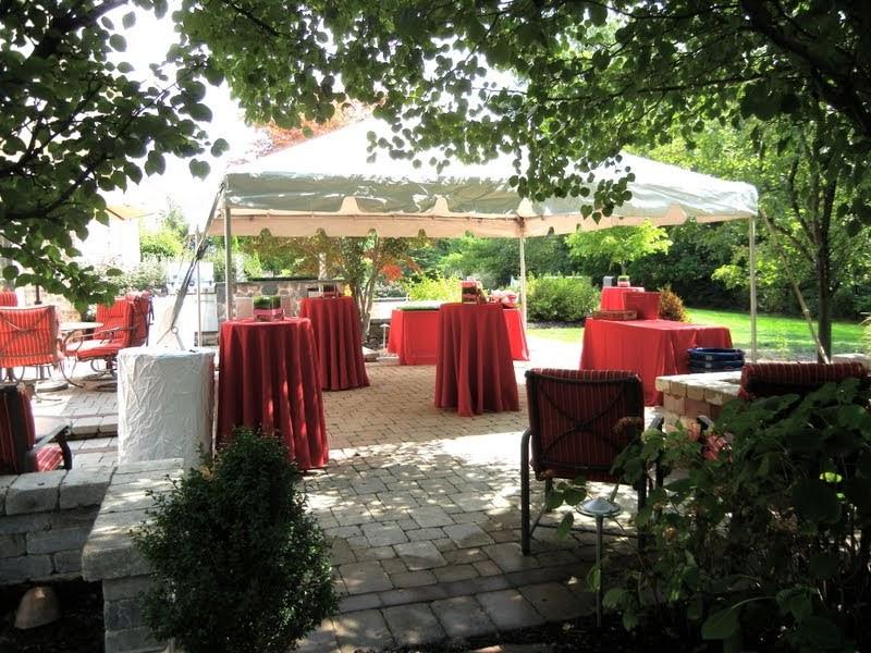 Backyard 40Th Birthday Party Ideas  Setting the Mood BACKYARD BASEBALL BIRTHDAY