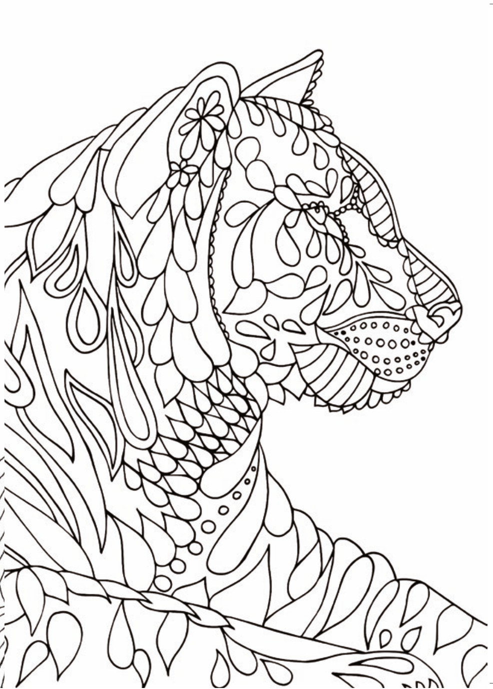 Coloring Pages For Boys Calm  Mindfulness Drawing at GetDrawings