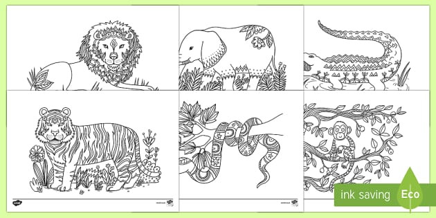 Coloring Pages For Boys Calm  Jungle Mindfulness Colouring Sheets Mindfulness