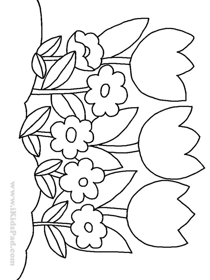 Coloring Pages Of Flowers For Kids  row of tulip flowers coloring pages for kids