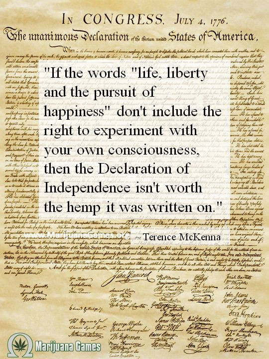 Constitution Life Liberty And Pursuit Of Happiness Quote  Pursuit Happiness Declaration to Pin on