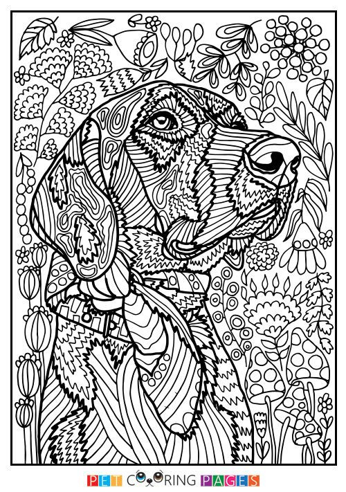 "Detailed Coloring Pages Of Girls  Free printable Mutt coloring page ""Rodžers"" available for"