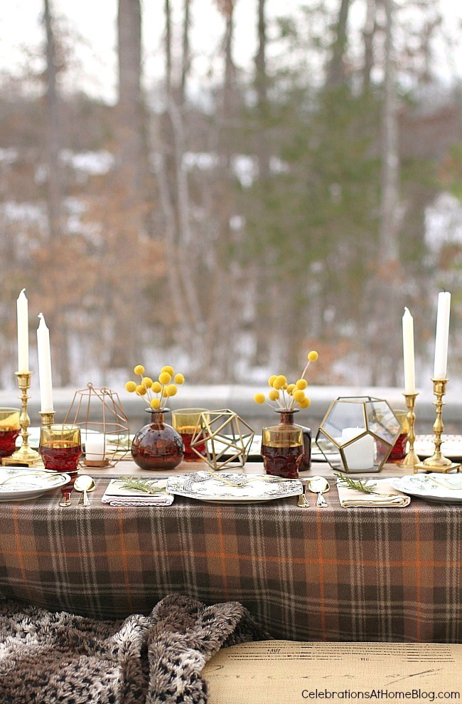 "Dinner Party Ideas Winter  Winter Dinner Party ""snowed in"" Celebrations at Home"