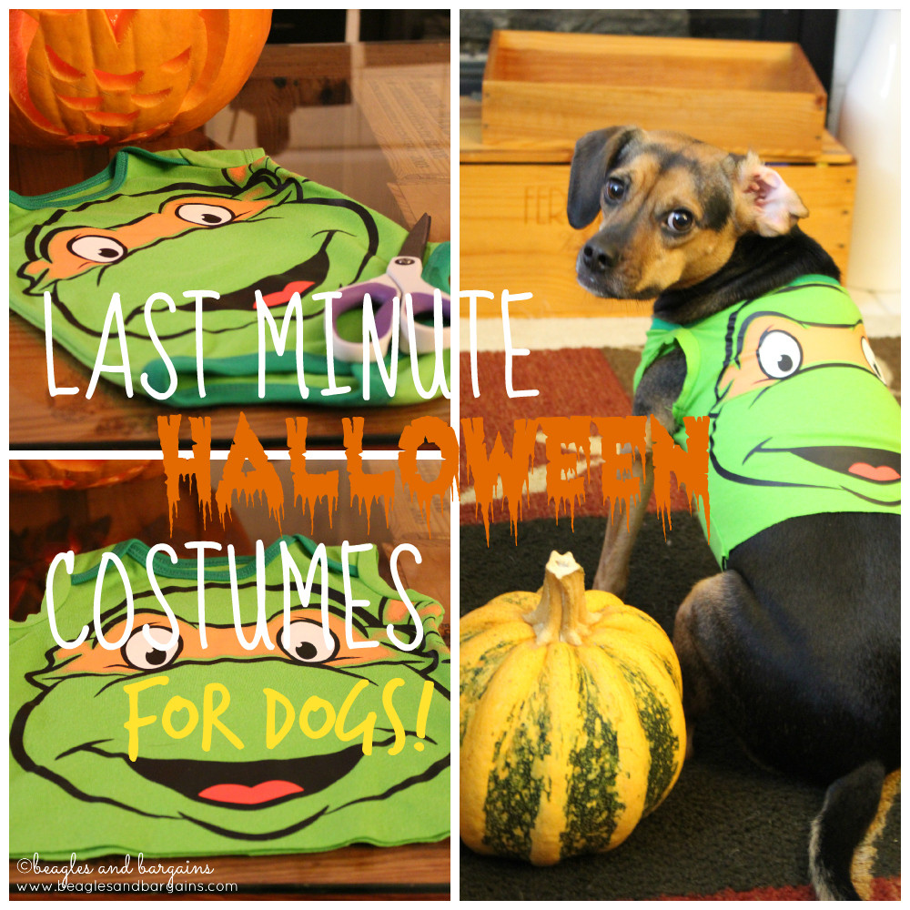 DIY Dog Clothes From Baby Clothes  Last Minute DIY Dog Halloween Costumes from Baby esies
