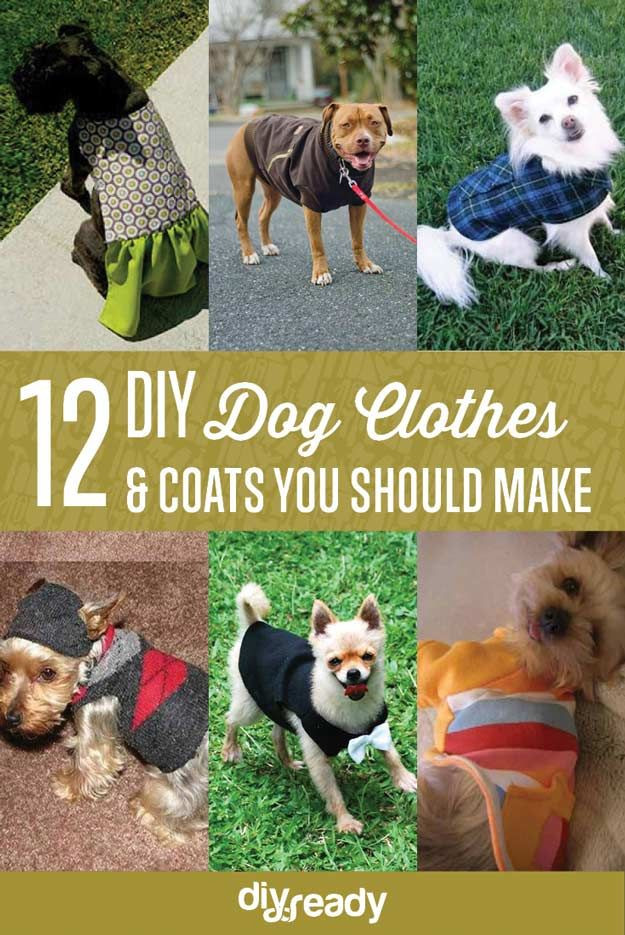 DIY Dog Clothes From Baby Clothes  25 best ideas about Dog Outfits on Pinterest