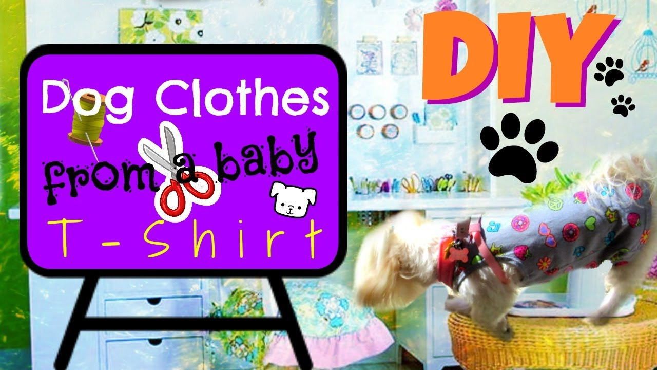 DIY Dog Clothes From Baby Clothes  DIY? Dog clothes from a baby T shirt Coton de tulear I