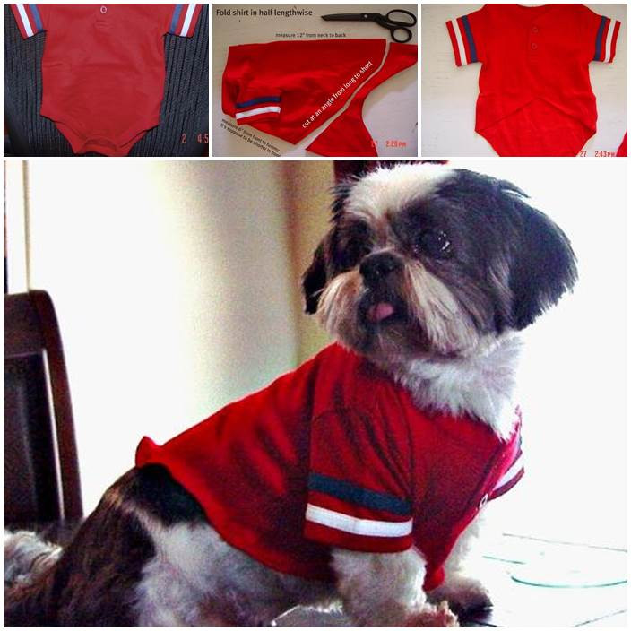 DIY Dog Clothes From Baby Clothes  DIY Cute Pants for Dog