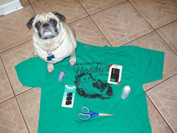 DIY Dog Clothes From Baby Clothes  Doggie T Shirt