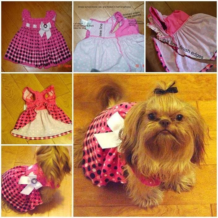 DIY Dog Clothes From Baby Clothes  DIY Dog Dress from Baby Dress LovePetsDIY