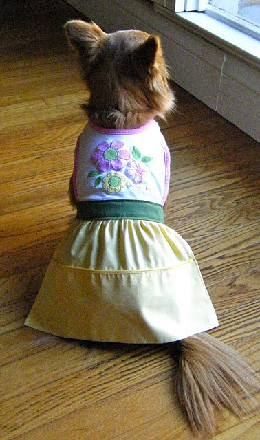 DIY Dog Clothes From Baby Clothes  Make a Dog Dress From Recycled Baby Bib