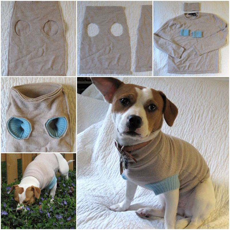 DIY Dog Clothes From Baby Clothes  DIY Upcycle old Sweater into Cute Pet Clothes