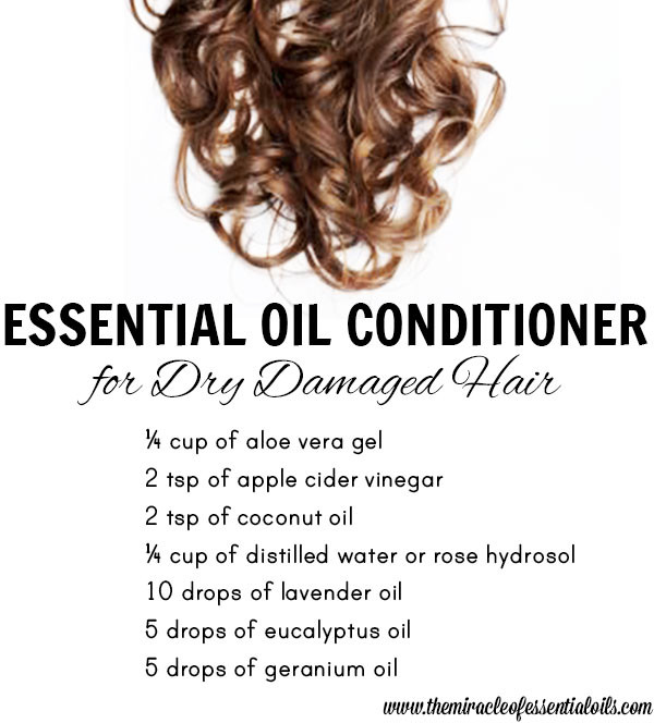 DIY Leave In Conditioner For Damaged Hair  DIY Essential Oil Conditioner for Dry Damaged Hair The