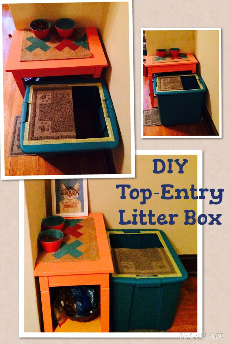 DIY Top Entry Litter Box  98 best images about litterbox on Pinterest