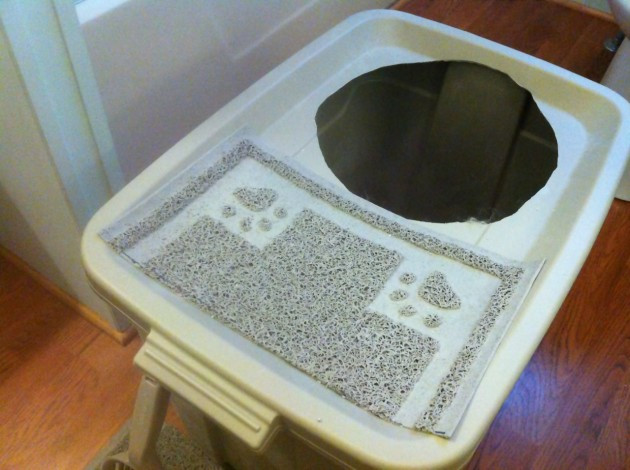 DIY Top Entry Litter Box  DIY Project Top Entry Litter Box