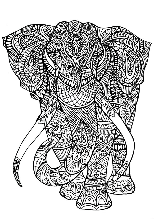 Elephant Coloring Book For Adults  Printable Coloring Pages for Adults 15 Free Designs