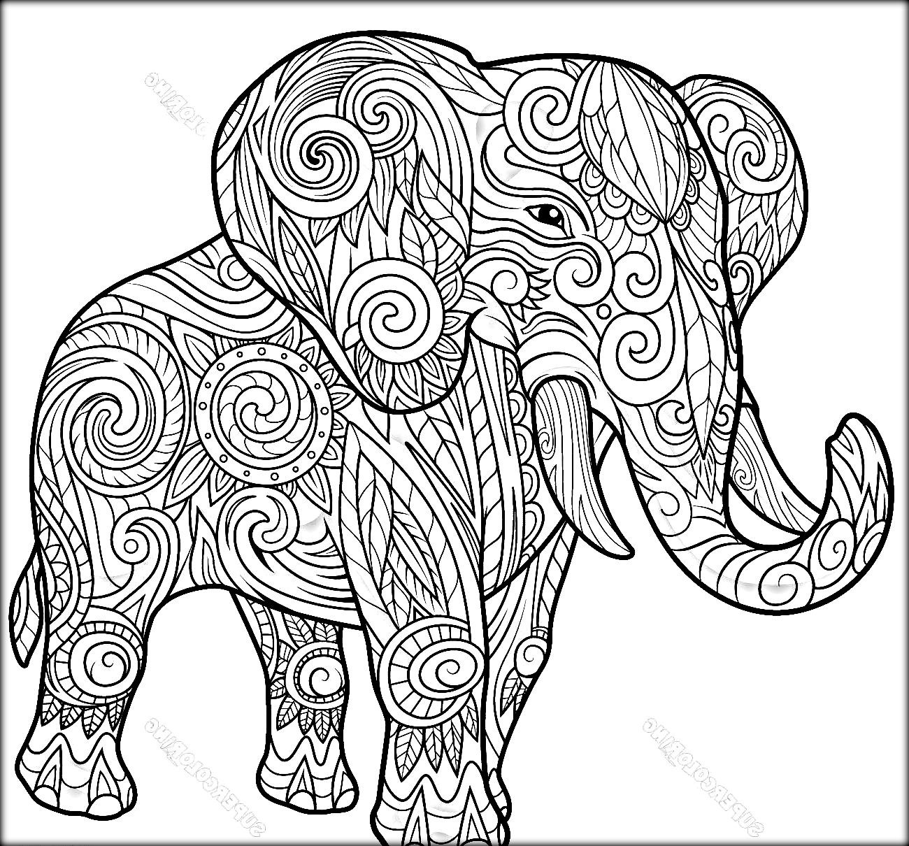 Elephant Coloring Book For Adults  Elephant Coloring Pages coloringsuite