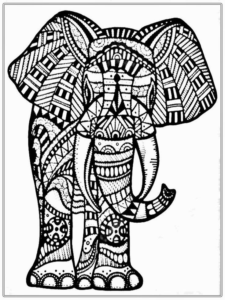 Elephant Coloring Book For Adults  19 best images about Adult coloring Elephants on