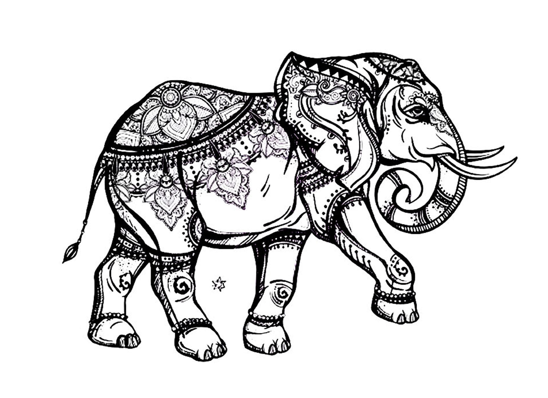 Elephant Coloring Book For Adults  Elegant elephant Elephants Adult Coloring Pages