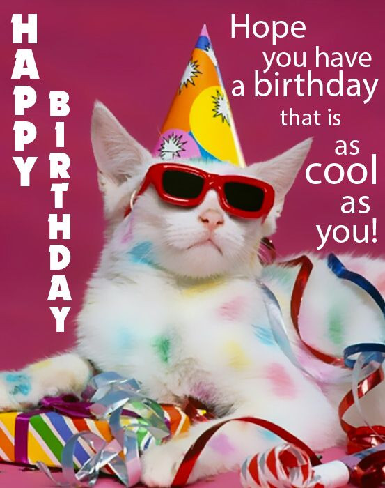 Free Happy Birthday Images Funny  Happy Birthday Funny Birthday eCards and Gifs