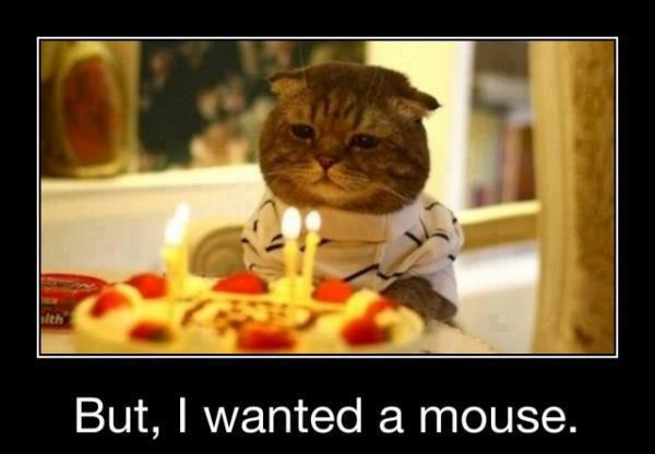 Free Happy Birthday Images Funny  42 Most Happy Funny Birthday &