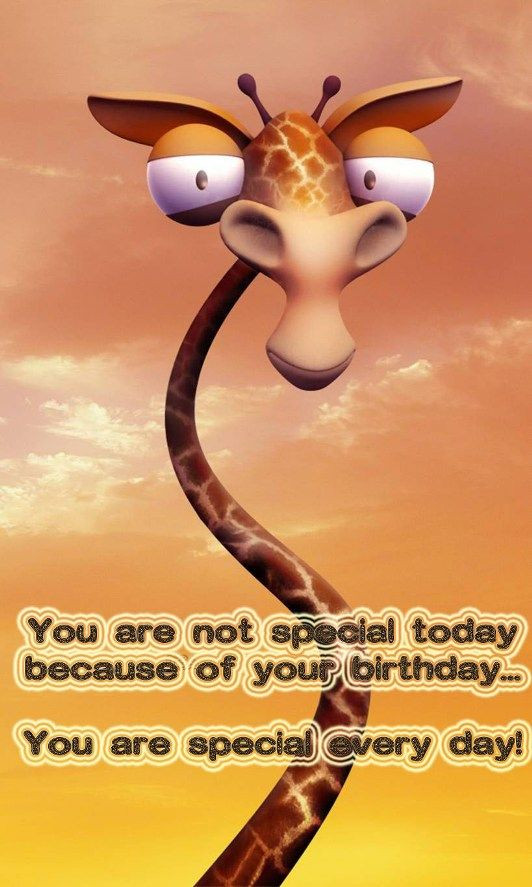 Free Happy Birthday Images Funny  Funny birthday image with greeting words