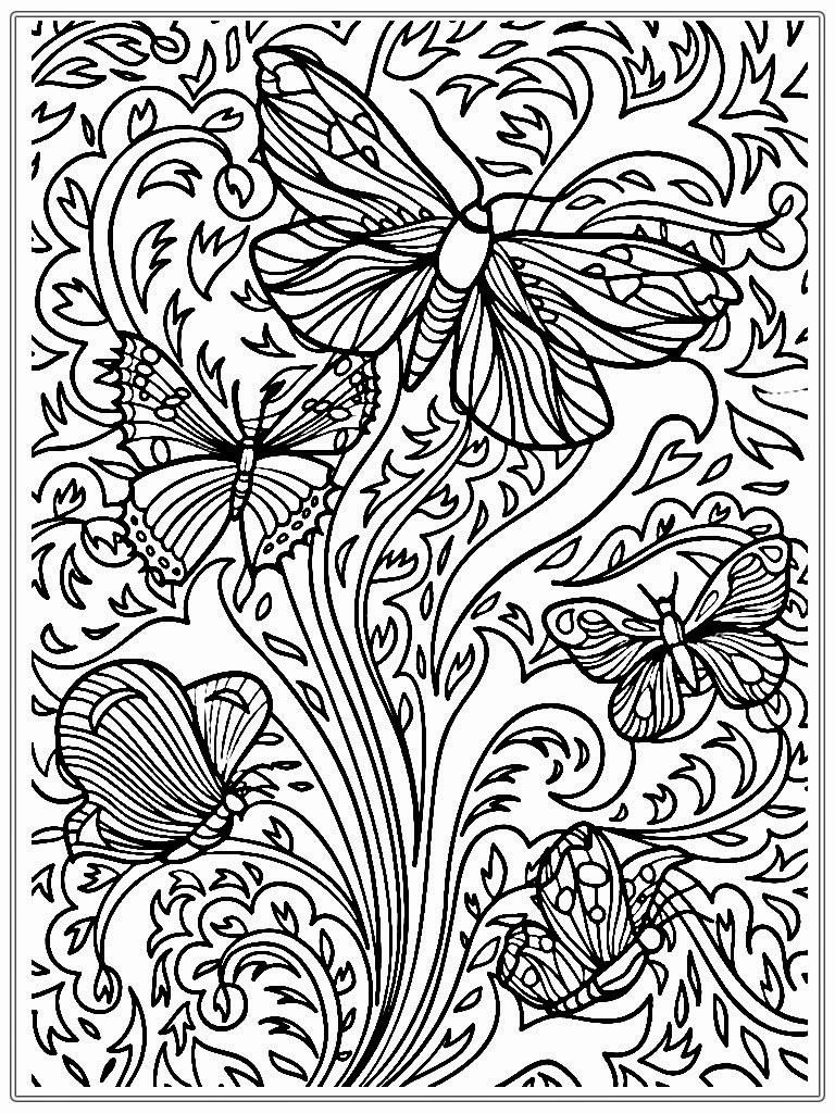 Free Online Coloring Pages  Adult Coloring Pages Butterfly