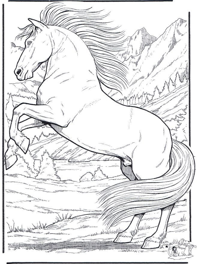 Free Printable Realistic Horse Coloring Pages  Free Coloring Pages Animals Realistic