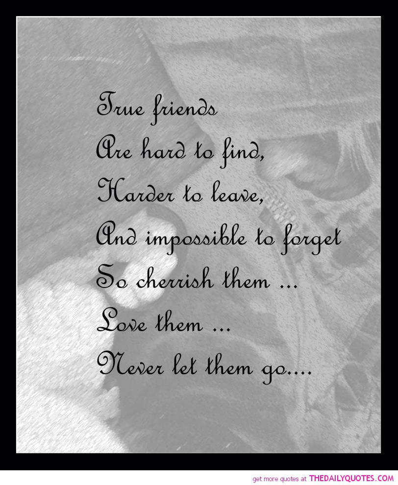 Friendship Pics With Quotes  Quotes Letting Go Friendships QuotesGram