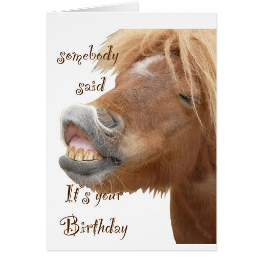 Funny Horse Birthday Pictures  Funny Horse Birthday Card