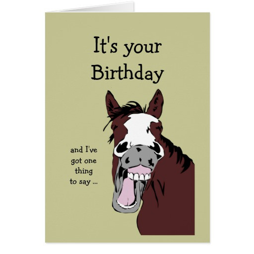 Funny Horse Birthday Pictures  Funny Birthday Quotes With Horses QuotesGram