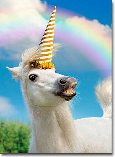 Funny Horse Birthday Pictures  Uni Horse Funny Birthday Card Greeting Card by Avanti