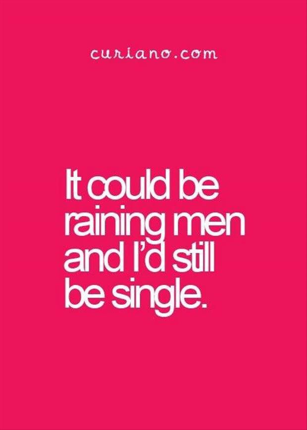 Funny Single Quotes For Guys  Funny The Day 105 Pics