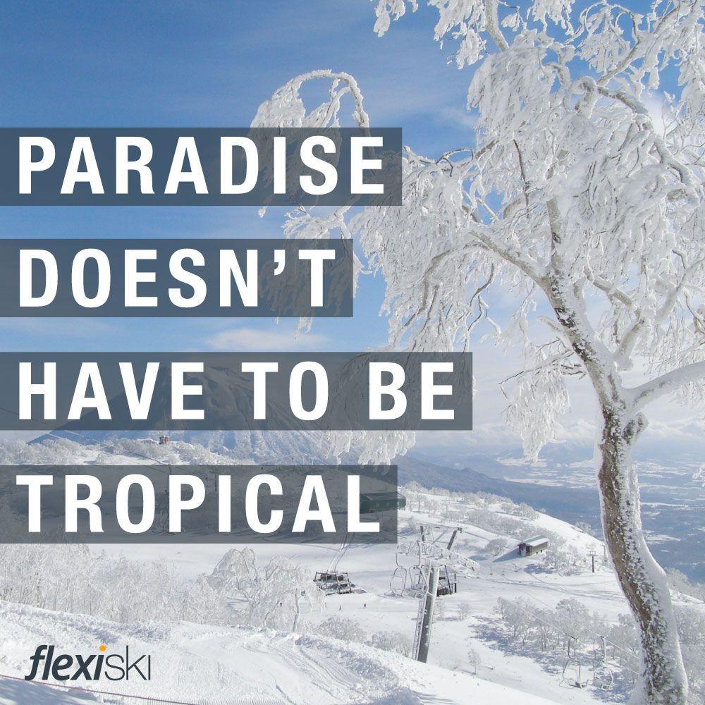 Funny Snowboarding Quotes  ski quote ski