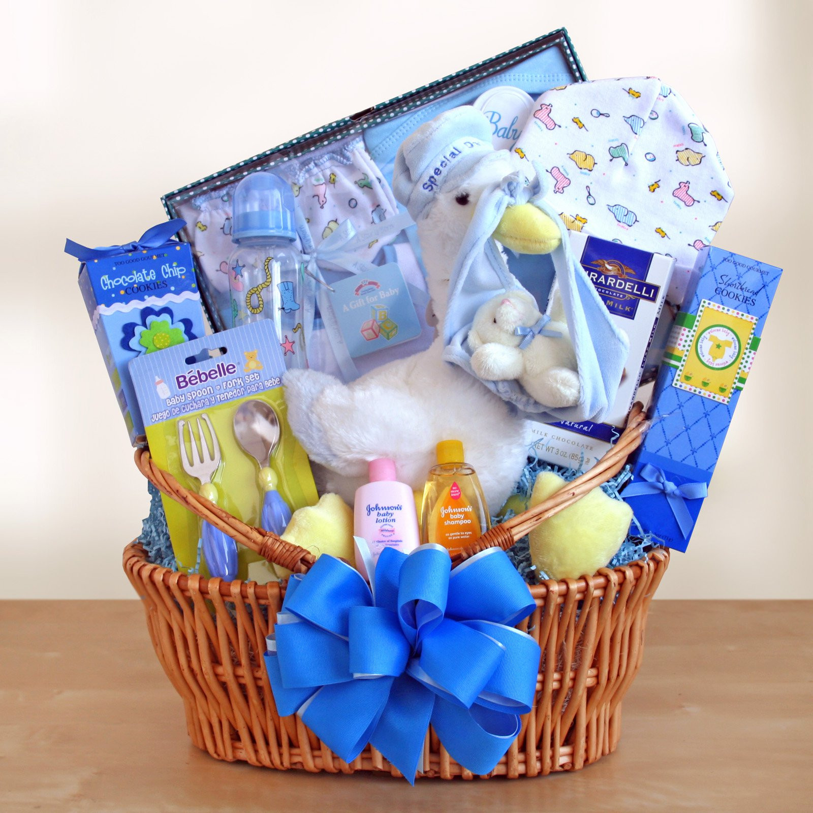 Gift Basket Ideas For Baby Shower  Special Stork Delivery Baby Boy Gift Basket Gift Baskets