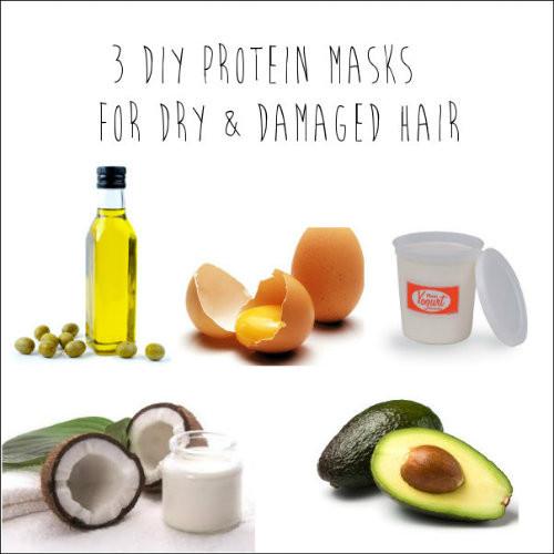 Hair Masks For Damaged Hair DIY  3 DIY Protein Masks for Dry & Damaged Hair