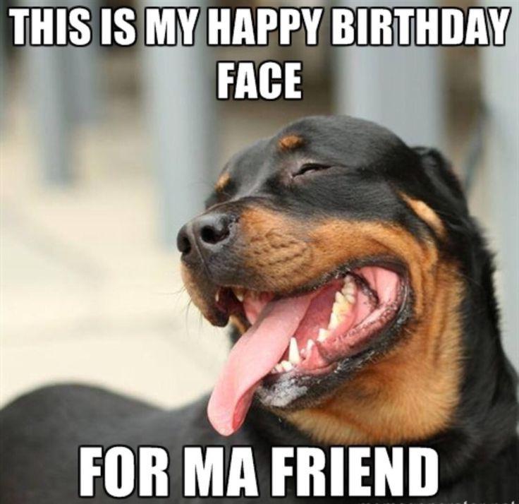 Happy Birthday Funny For Her  20 Funny Happy Birthday Memes