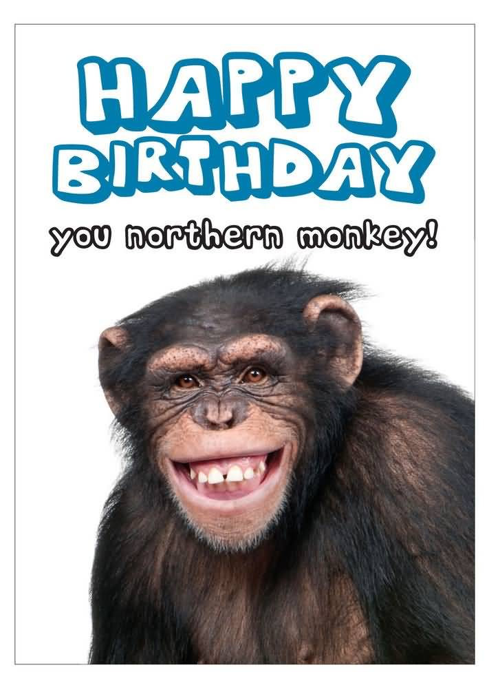 Happy Birthday Image Funny  Funny Birthday Wishes Messages and Quotes