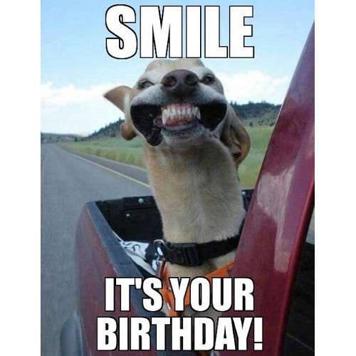 Happy Birthday Image Funny  THE 150 FUNNIEST HAPPY BIRTHDAY MEMES Dank Memes ly