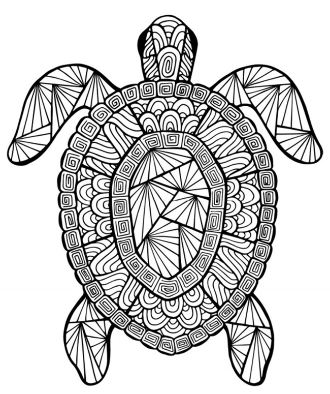 Intricate Coloring Pages For Kids  18 fun free printable summer coloring pages for kids