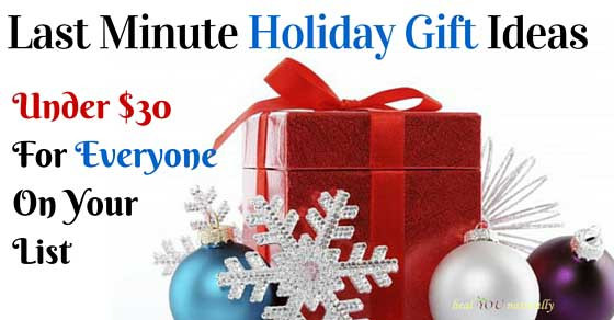 Last Minute Holiday Gift Ideas  Last Minute Holiday Gift Ideas Under $30 00
