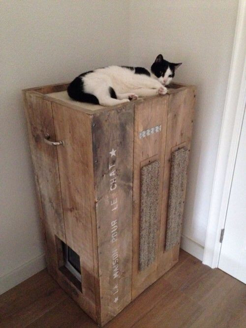 Litter Box Furniture DIY  8 Creative Ways to Hide Your Cat s Litter Box